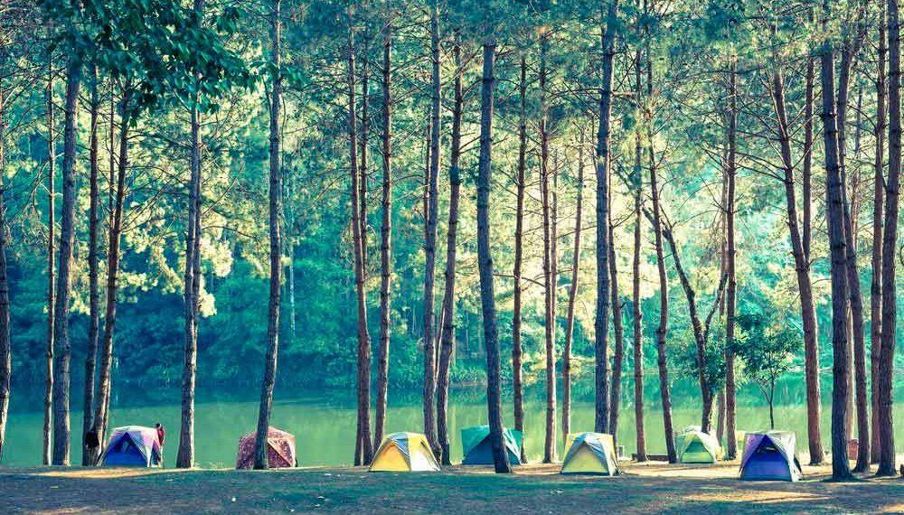 consejos para ir de camping