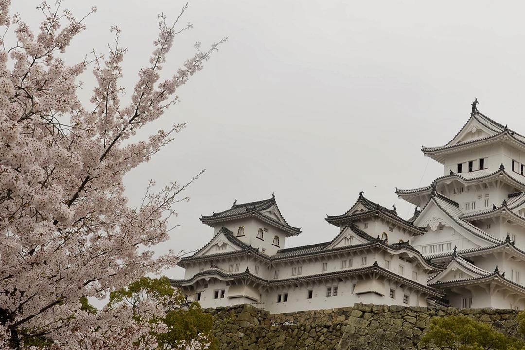 Encuentra en este artículo qué ver en Japon.