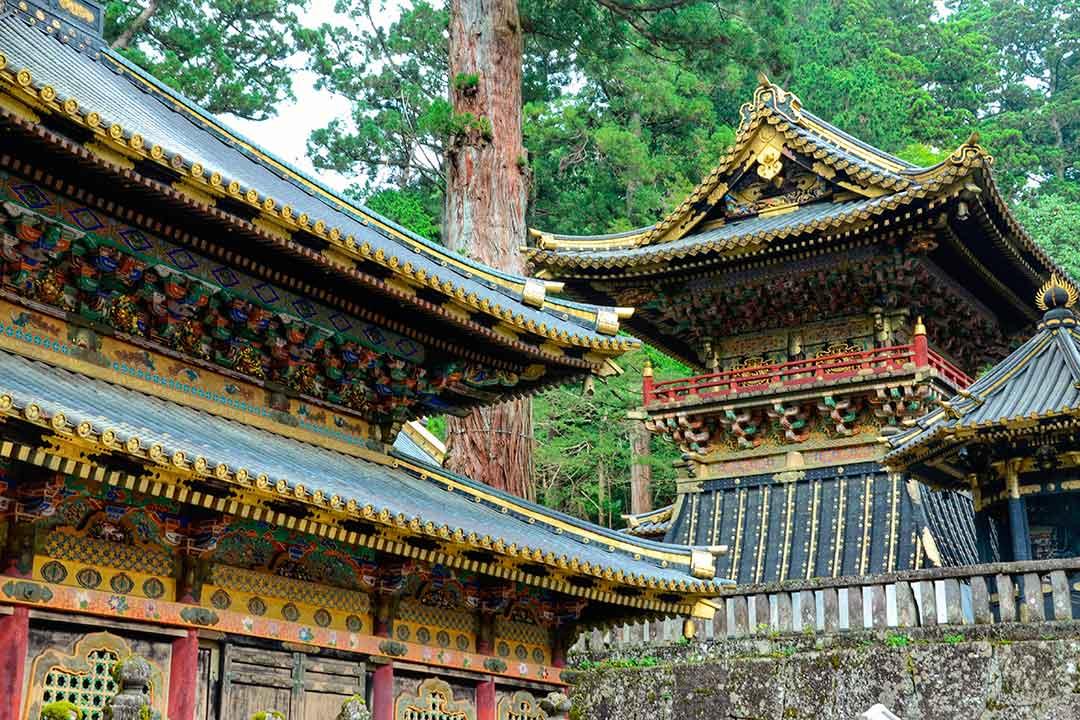 Disfruta de la arquitectura antigua en tu viaje a Japón.