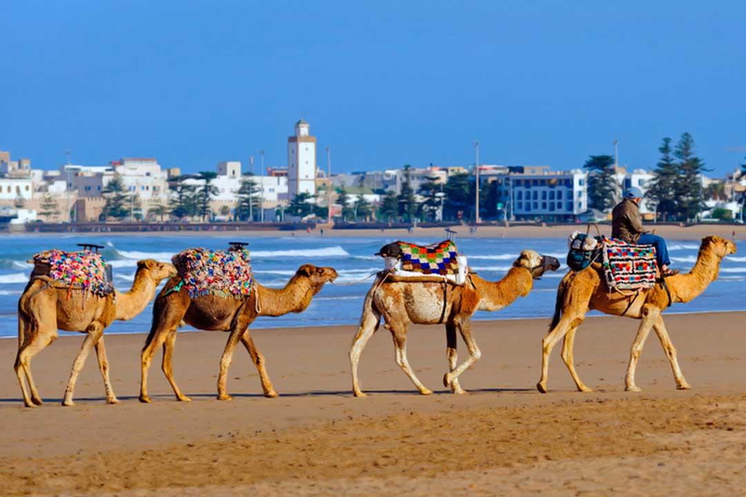 Essaoira, un pueblo que ver en Marruecos