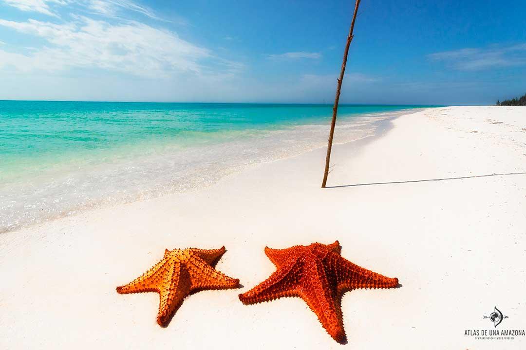 Cayo Jutías es una de las playas más bonitas del mundo
