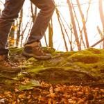 Consejos a seguir si vas a practicar trekking en otoño
