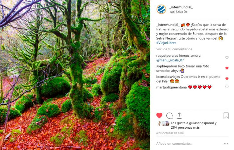 fotos-viaje-instagram-selva-de-irati