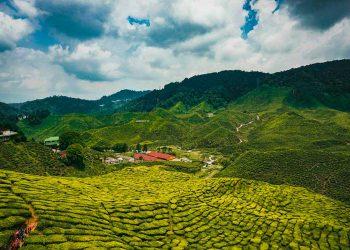 Entérate de todo lo necesario para hacer turismo en Malasia